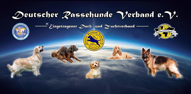 DRV e.V. Banner